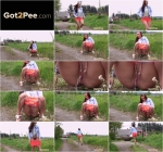 By the field (G2P) FullHD 1080p