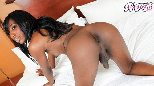 Gorgeous Jada Dickens Strokes Her Dick! [Black-TGirls / HD]