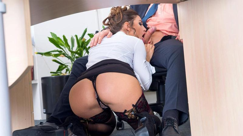 Julia Roca Has Her Hairy Pussy Pounded in the Office [Private / SD]