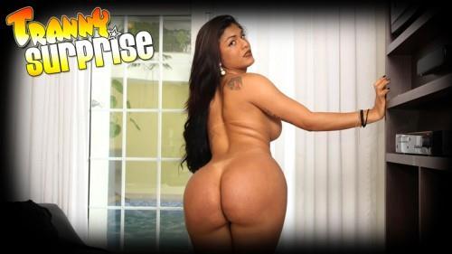 Transsexual.com [Roberta Martins - Big And Hard] SD, 576p