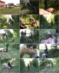 Cucciolopage - The Horse Dealer 6 [SD/480p/AVI/595 MB] by XnotX