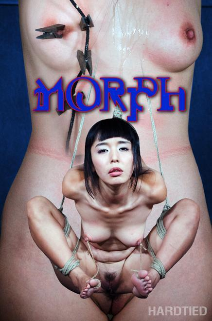 Marica Hase (Morph / 27.07.2016) [HardTied / HD]