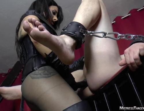 Mistress Tangent - Fast Fuck [HD, 720p] [MistressTangent.com] - Strapon