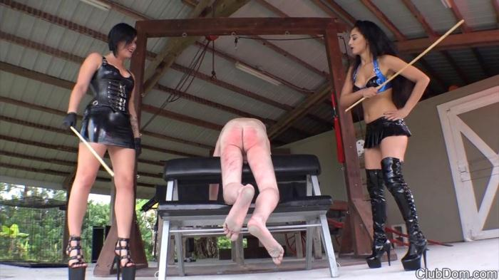 Mistresses Sasha & Elena Sinn - Caning [HD/720p/MP4/409 MB] by XnotX