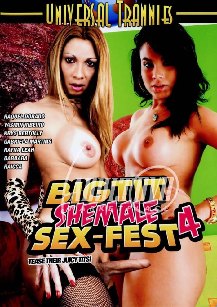 Big Tit Shemale Sex-Fest 4 [DVDRip 480p]