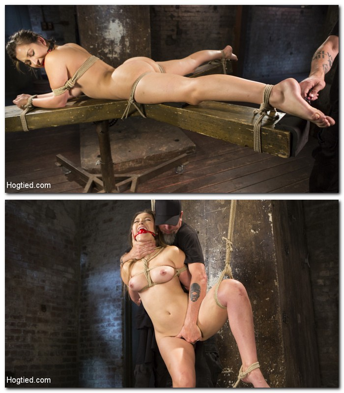 Dani Daniels  - Submits in Brutal Bondage  [HogTied/Kink/SD]