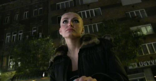 Kayla - Public Agent (2013/SD)