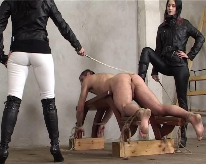 Cruel-Mistresses.com: The Guy Who Wants to Suffer [SD] (460 MB)