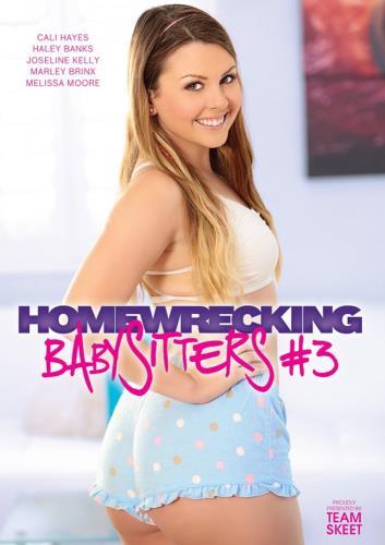 Homewrecking Babysitters 3 (2016) WEBRip/FullHD