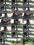 Exclusive Pissing: Amateur - Against a Tree (06.09.2016) (FullHD/2016)