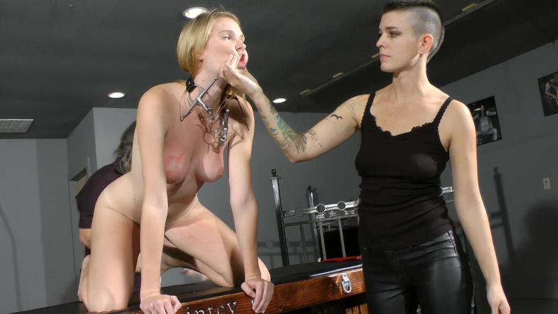 Paintoy.com: Ashley Lane - Crash Test Slave [FullHD] (3.97 GB)