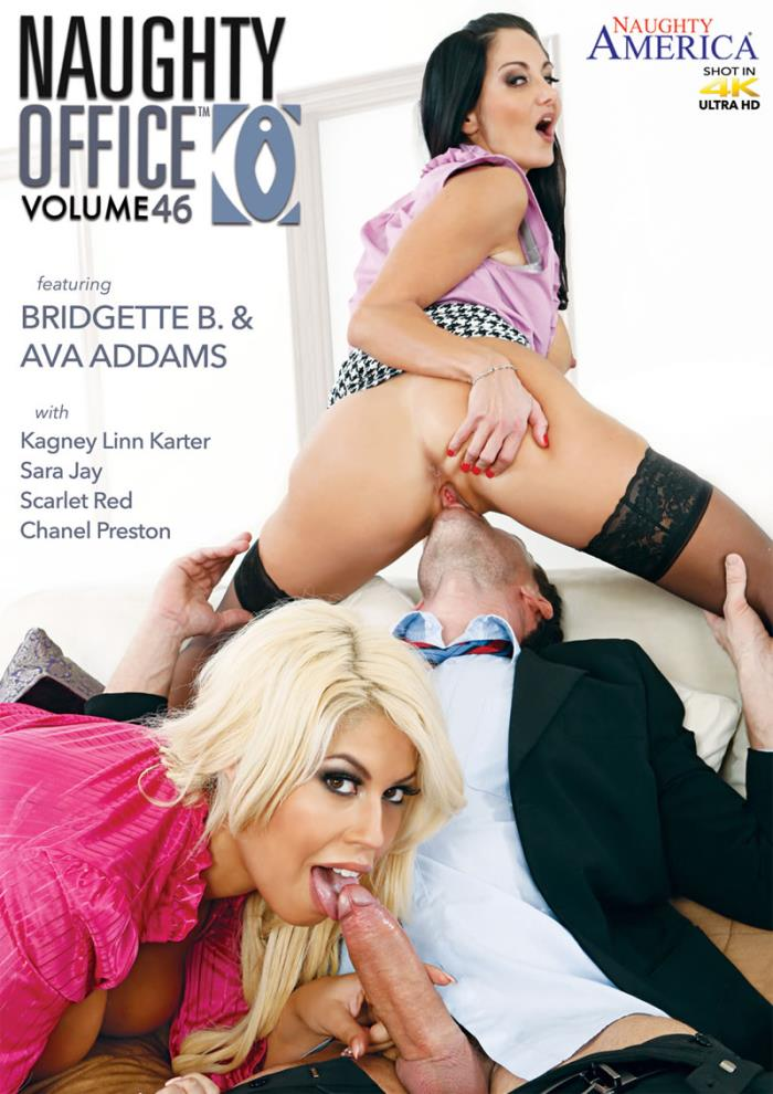 Naughty America: Ava Addams, Bridgette B., Chanel Preston, Kagney Linn Karter, Sara Jay - Naughty Office 46 [WEBRip/SD 480p]