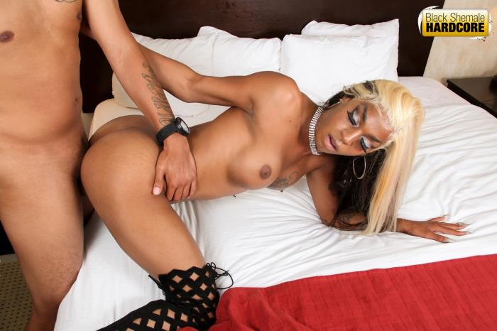 BlackShemaleHardcore: Salina Samone - Pounded By Mister [HD 720p]