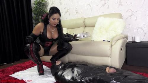 Scat [HARD toilet training by Mistress Ezada Sinn - Femdom] FullHD, 1080p