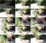 By the bins (G2P) FullHD 1080p