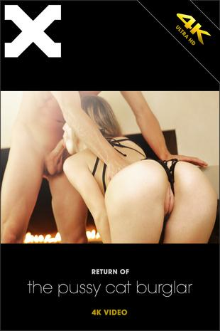 X-4rt.com: Return of the Pussy Cat Burglar [SD] (281 MB)