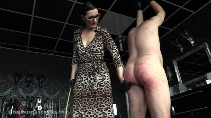 A macho get busted by brutal caning! (Ball Busting Chicks) FullHD 1080p