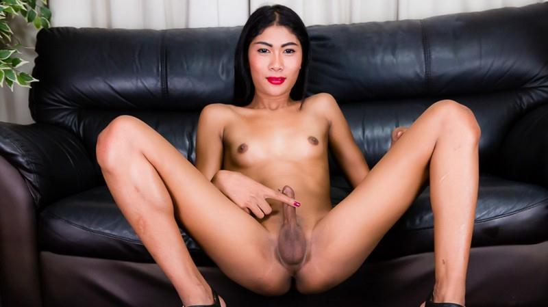 Sexy Slim Amy Strokes It! (11.10.2016) [Ladyboy.xxx / HD]