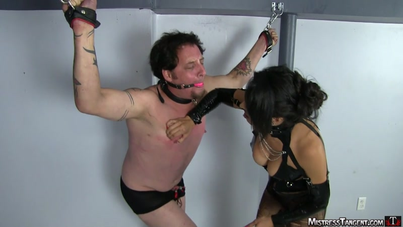MistressTangent.com: Harsh session [HD] (557 MB)