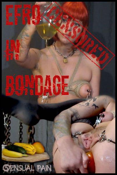 Abigail Dupree - EFRO in bondage censored [HD 720p]