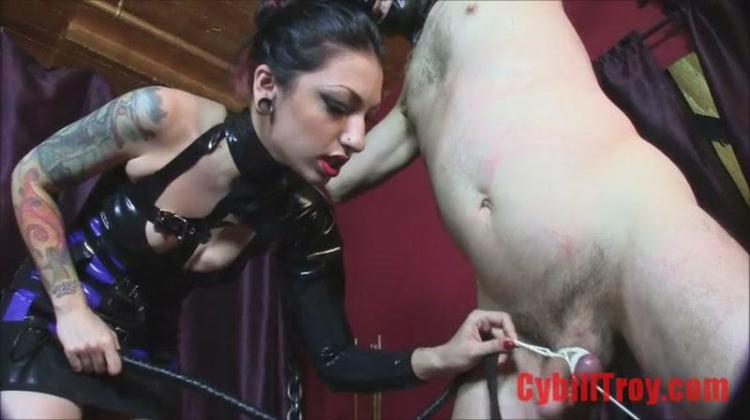 Cybill Troy - Cock Whipping / 27 Oct 2016 [CybillTroy / SD]