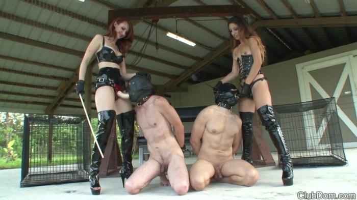 Female Domination - Kendra & Alexa Caning and Strapon (Femdom, Strapon) [FullHD, 1080p]