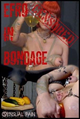 Abigail Dupree - EFRO in bondage censored  [HD 720p]