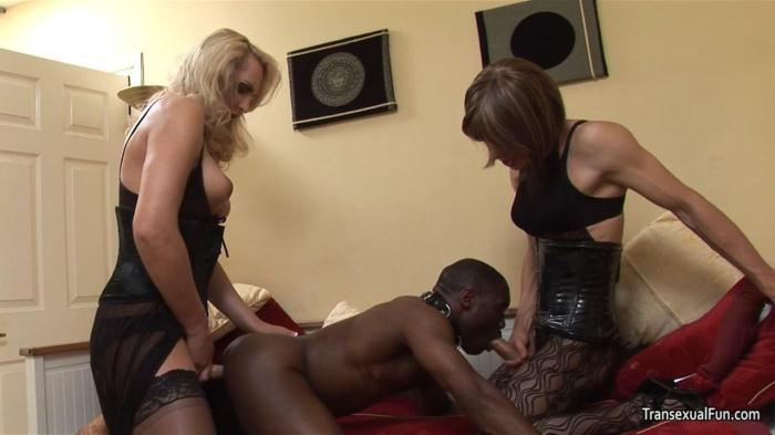 Transexualfun.com - Shemale Mistress with another shemale and black sub guy (Shemale) [HD, 720p]