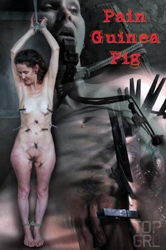 Pain Guinea Pig [HD, 720p] [TopGrl.com] - BDSM, Torture