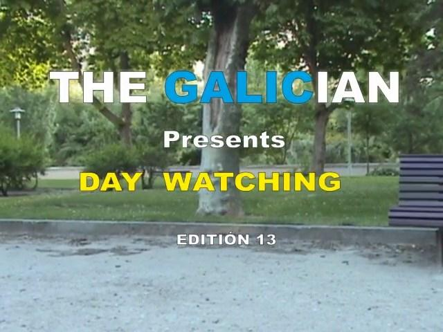 VideosPublicSex.com - The Galician Day 13 (Voyeur) [SD, 480p]