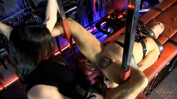Multi-Slave Fuck with Strapon First Up / 14 November 2016 [GoddessAlexandraSnow, Clips4sale / HD]