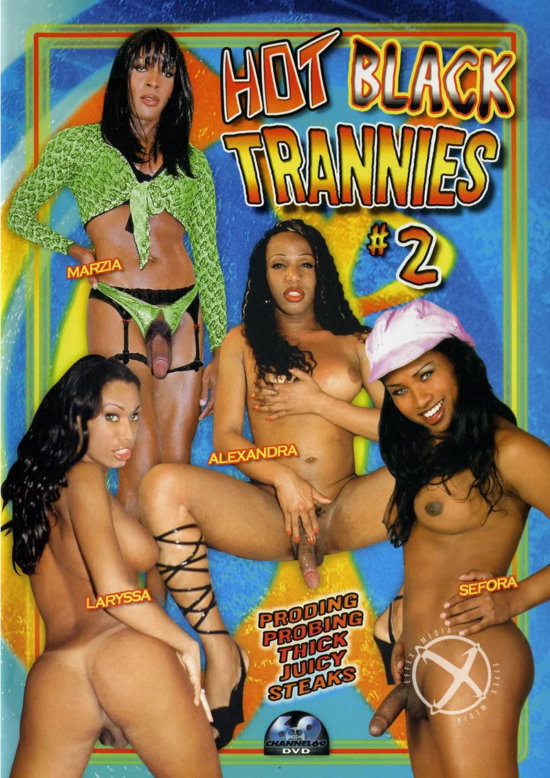 Hot Black Trannies 2 [WEBRip/SD 384p]