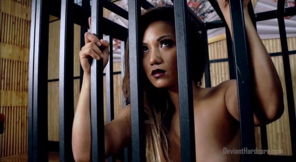 Lana Violet - Caged Asian Cock Slut Lana Violet Fucked Hard [FullHD 1080p]