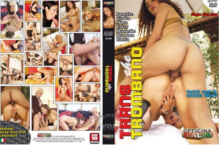 Trans Che Trombano [DVDRip 480p]