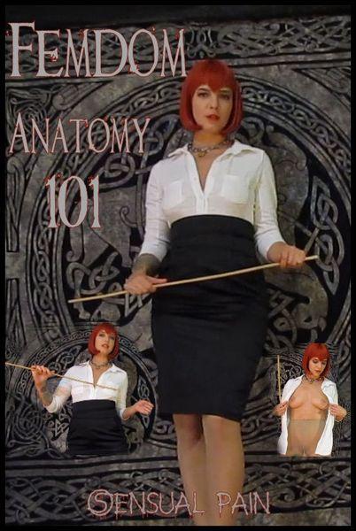 Femdom Anatomy 101 (SensualPain) HD 720p
