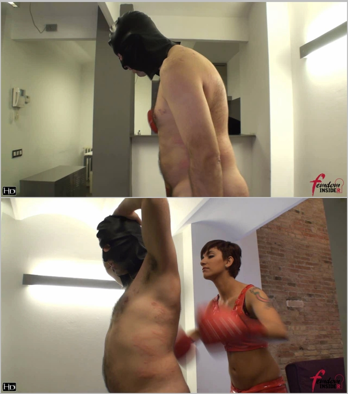 FemdomInsider - Miss Dolce [Boxing The Shit Out Of A Slave] (HD 720)