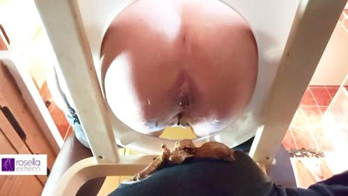 Eating my shit Next Mega shit sausage on a slave mouth, under my toilet seat - Femdom Scat [FullHD, 1080p] [Scat]