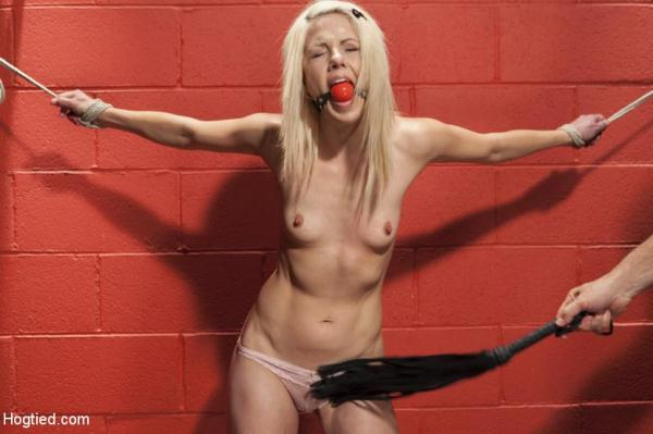 Holly Hanna - Double Stuffed Blonde with Little Titties [H0gT13d.com] (SD, 480p)