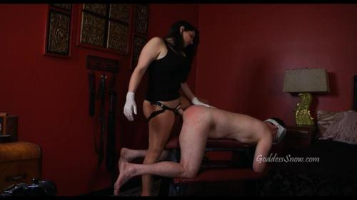 GoddessSnow.com [Goddess Alexandra Snow - Punished For Stroking Part 2 Take My Cock] HD, 720p