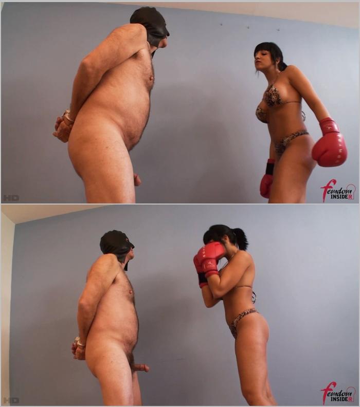 FemdomInsider: Miss Hannah - Boxing My Chubby Slave Balls  [FullHD 1080] (267 MB)