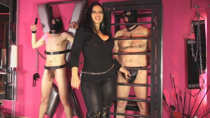 Mistress Ezada Sinn - Triple forced counted down milking (MistressEzada) FullHD 1080p