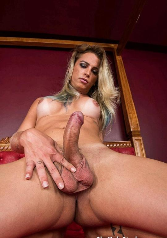 SheMaleStrokers: Dany de Castro - Smokin Hot Brazilian Trans Girl Wants You To Cum Tug on Her Chain! (SD/540p/311 MB) 27.12.2016
