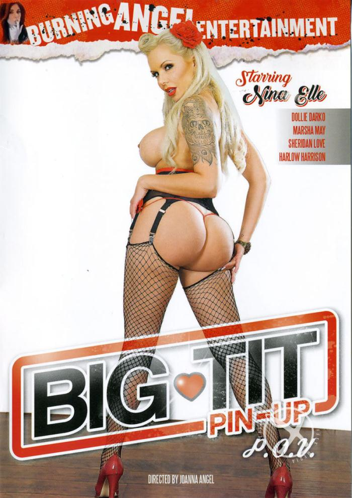 Big Tit Pin-Up POV  [DVDRip 404p]