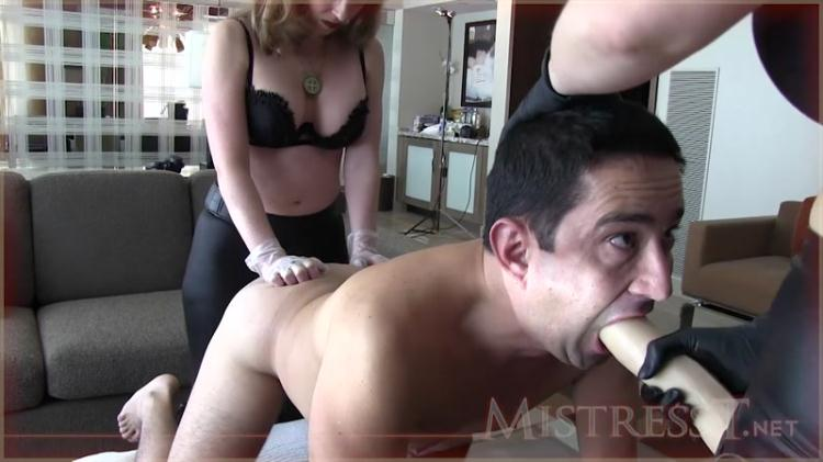 Mistress T and Alexandra Snow - Ass To Mouth Spit Roast / 09 Dec 2016 [MistressT / HD]