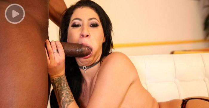 ArchangelVideo.com - Esmi Lee - Black Stockings And Black Cock [SD, 480p]