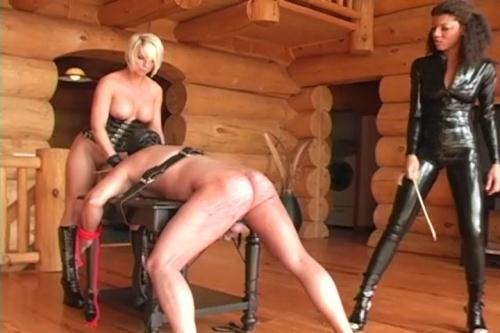 Goddesses Brianna and Dante Posh - Three bitches whipped [SD, 480p] [Clips4sale.com]