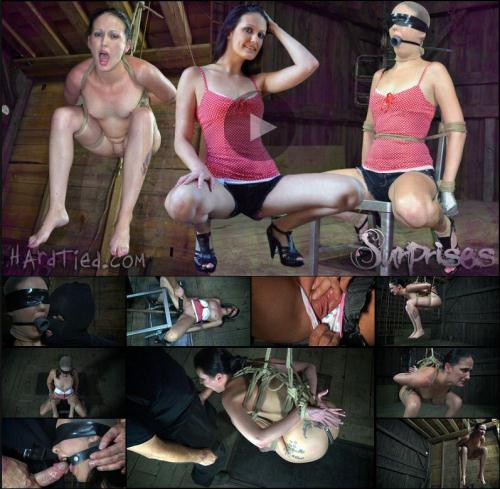 HardTied.com [Hailey Young - Surprises] HD, 720p