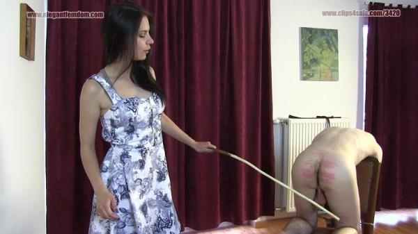 Caning With Lucy - ElegantFemdom.com / Clips4sale.com (FullHD, 1080p)
