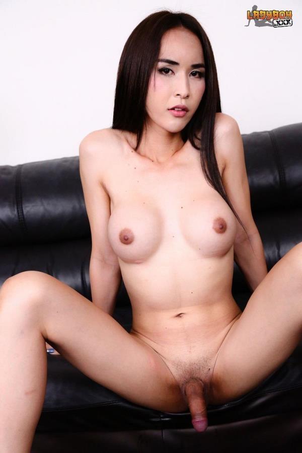 hd ladyboy porn