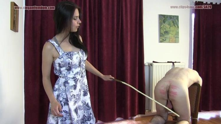 Princess Lucy - Caning With Lucy / 21 Feb 2017 [Clips4sale, ElegantFemdom / FullHD]